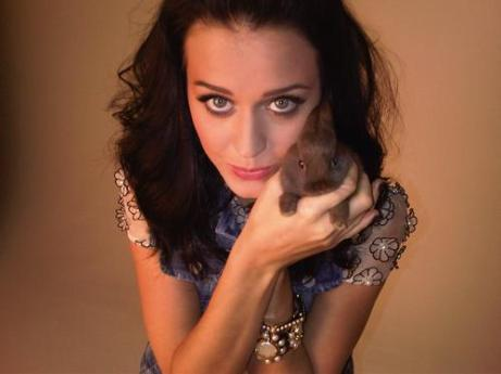 Katy+Perry+bunny+rabbit