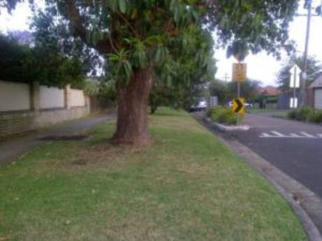 wee-tree