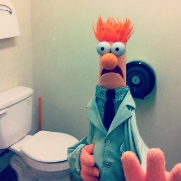 muppets-selfie