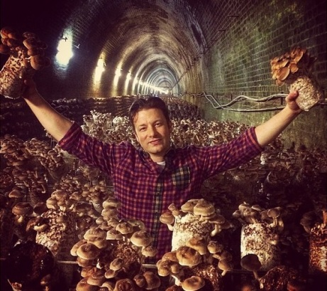 jamie-oliver-mushrooms