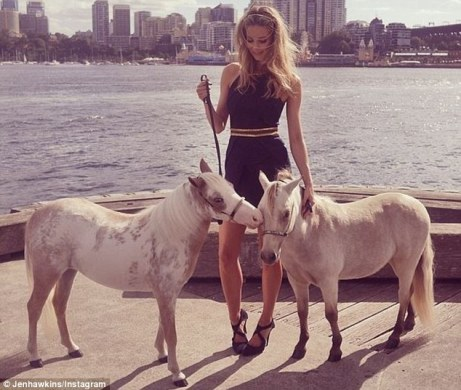 jen-hawkins-ponies