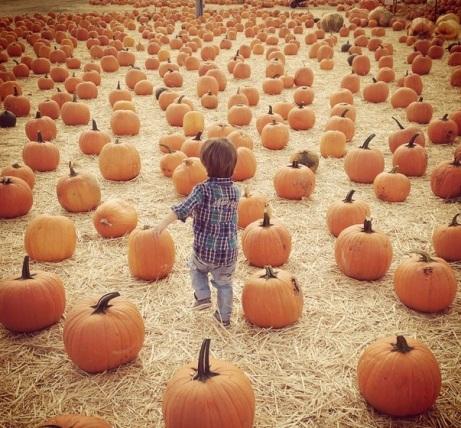 halloween14-lachey