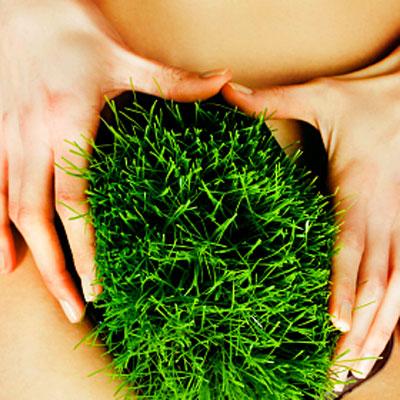 grass-pubic-hair-400x400