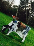 After brekkie, my dear friend Lorrae took me for a twirl around the sculpture garden at the Heide Museum of Modern Art. I fell in love with the cows ...