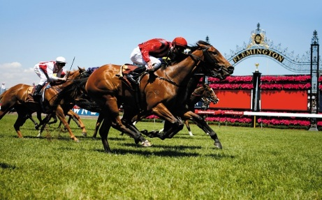 Gamble Me, ridden by Steven Arnold, wins the 2007 Cadbury Eden Stakes at Flemington.