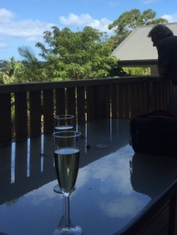 Sparkling wine on DD's deck afterwards.