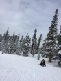 DD snowmobiling.