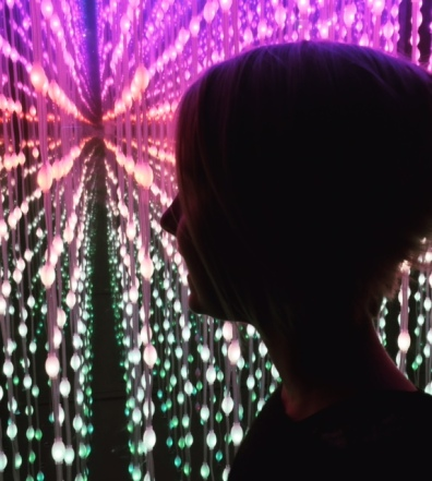 """The youngest had been banging on about wanting to see the """"room full of mirrors"""" at Vivid. Turned out it was this light box near the Park Hyatt, when you looked inside it, the lights seemed to go on forever."""