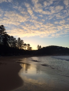 DD took this amazing photo of Whale Beach at sunset.