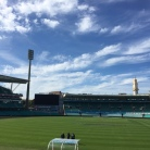 The view of the SCG from the Women in drinks board meeting.