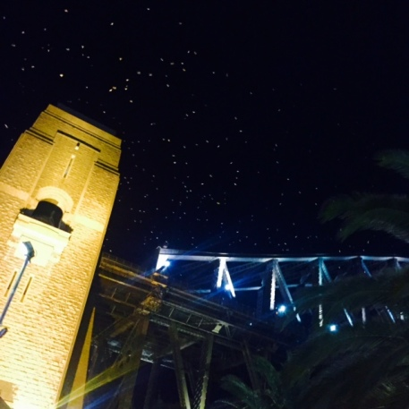 Those look like twinkling stars, but they're hundreds of birds circling the Harbour Bridge.