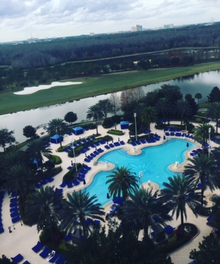 The view from our Orlando hotel room.