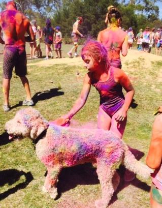 Post colour run puppy.