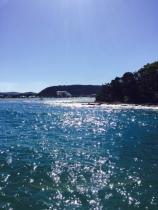 The sparkling sea en route to Ettalong.