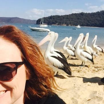 Pelican selfie.