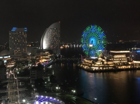 View from DD's Tokyo hotel.