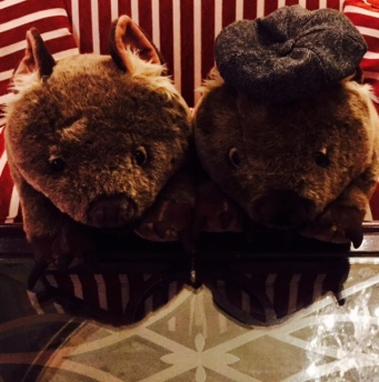 Wombats in the lobby of the Sir Stamford - I have no idea why.