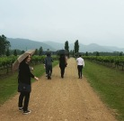 Heading off the in rain to lunch at Margan.