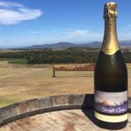 Our pink sparkling and the view at Devil's Corner.