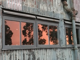 DD took this arty shot of the sunset reflected in an old building.