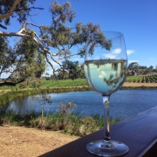 A glass of wine at Milton Vineyard.