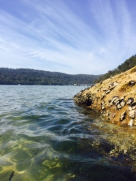 Gorgeous Pittwater.