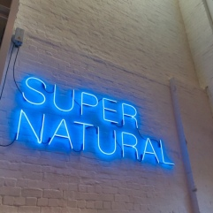 The exhibition at White Rabbit is called Supernatural - it's very cool.