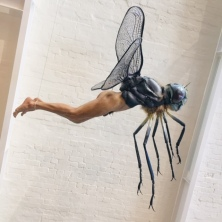 One of the dragonfly men.