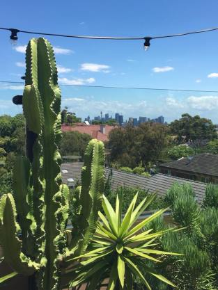 fernery-view