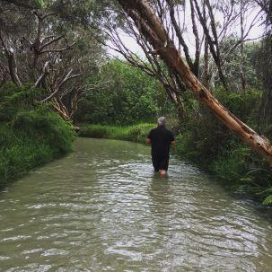 DD walking down Eli Creek