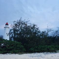 The lighthouse on Lady Elliott