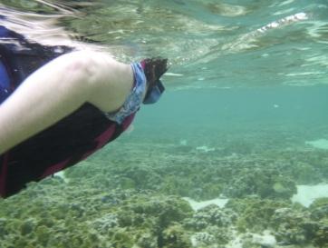Me snorkelling